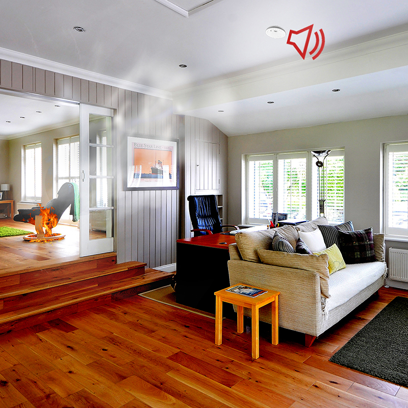 rauchmelder argus mit 10 jahres batterie en14604 schneider electric trade4less. Black Bedroom Furniture Sets. Home Design Ideas